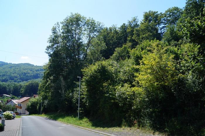 Blick in die Osterburgstraße in westliche Richtung